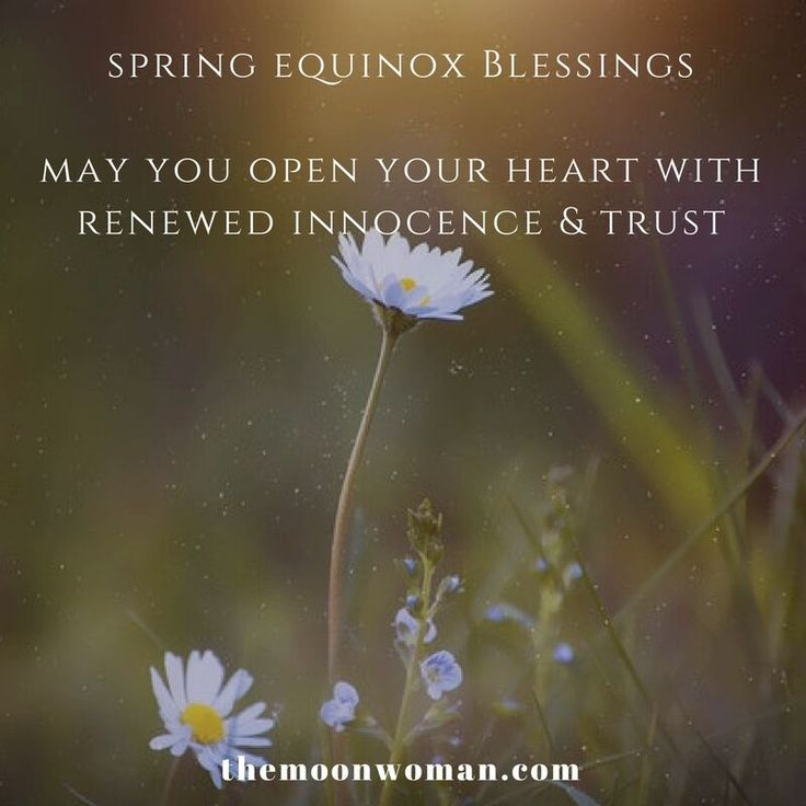 For those of you in the Northern hemisphere, today is the Spring Equinox...  I speak out the energies & how to embrace them in the LIVE FB video I just recorded which you can view on my website.  Blessings on your day, Tanishka