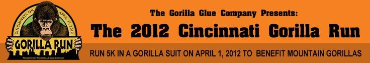 Check this out!  Cincinnati Gorilla run!!!!!