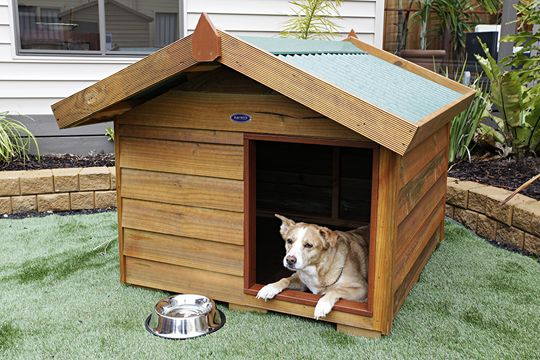 25 best ideas about wooden dog kennels on pinterest for Dog bed roof