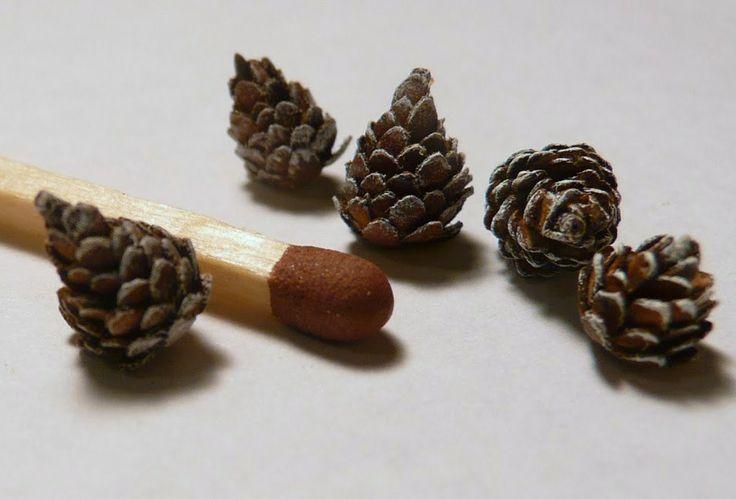 how to: tiny pinecones