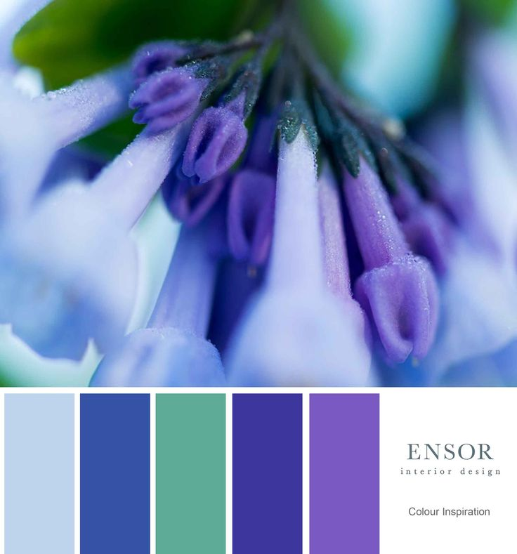 Blue colours. #winter #inspiration #design #ensor www.ensorinteriordesign.co.uk