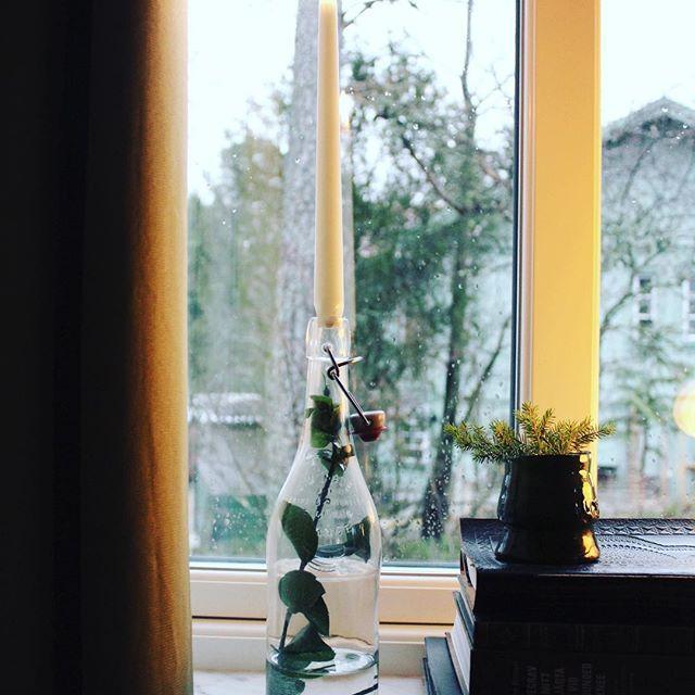 Ljusstake av flaska och eucalyptus
