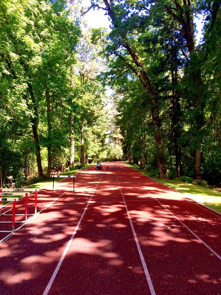 Bree was running on this track. She was running super fast, everyone was way behind her. You walked across the track, in front of her. Bree dodged leaving you swirling. Bree reached the finish line and stopped to look at you. (Open roleplay)