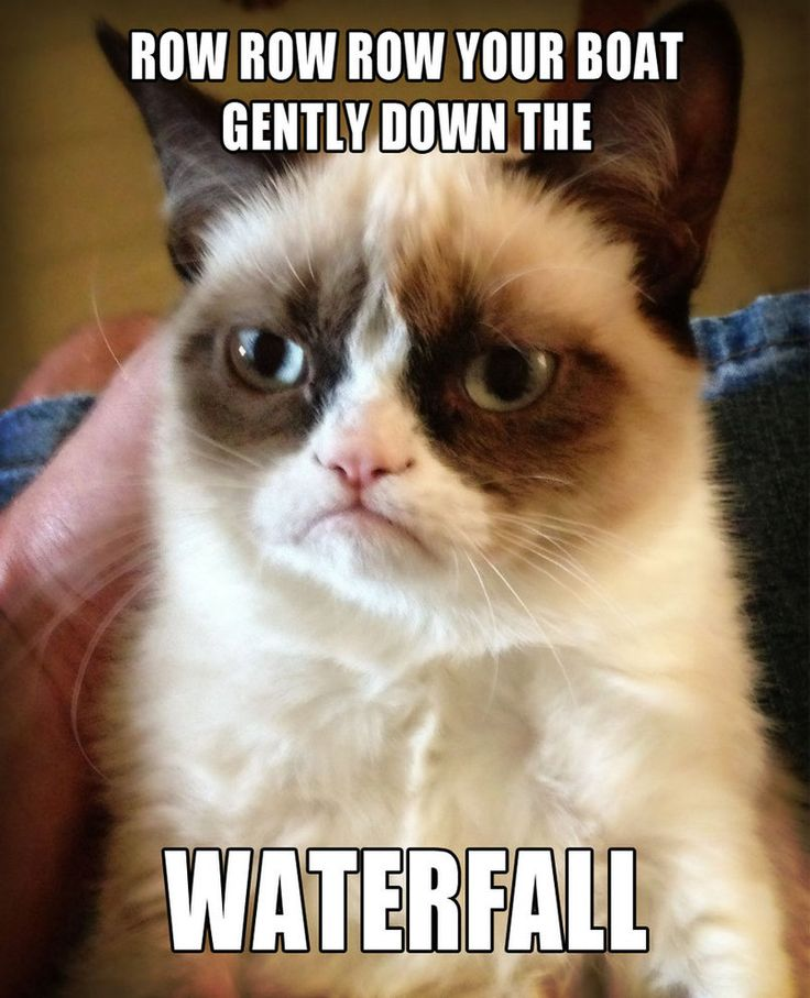 Grumpy Cat sings Row Row Row Your Boat by ~Cthulhu1976 on deviantART