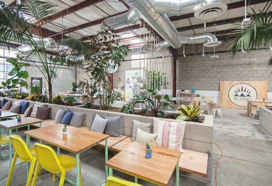 "Juice bar, yoga studio, vegan restaurant and wine bar in LA, ""The Springs"" markets itself as ""a multi-faceted urban oasis cultivating health, wellness, sustainability and community""."