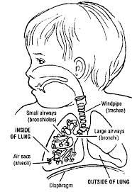 Image result for respiratory distress syndrome newborn