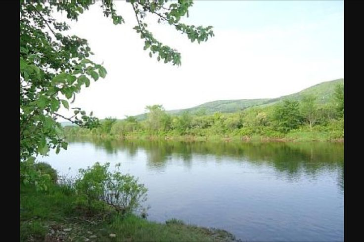 The Margaree River