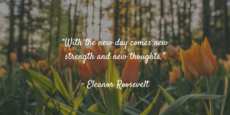 """With the new day comes new strength and new thoughts.""   - Eleanor Roosevelt"