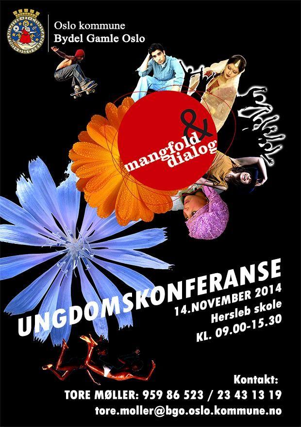 Ungdomskonferanse, Hersleb skole, 14. november.