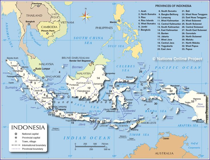 cool indonesia - Google Search
