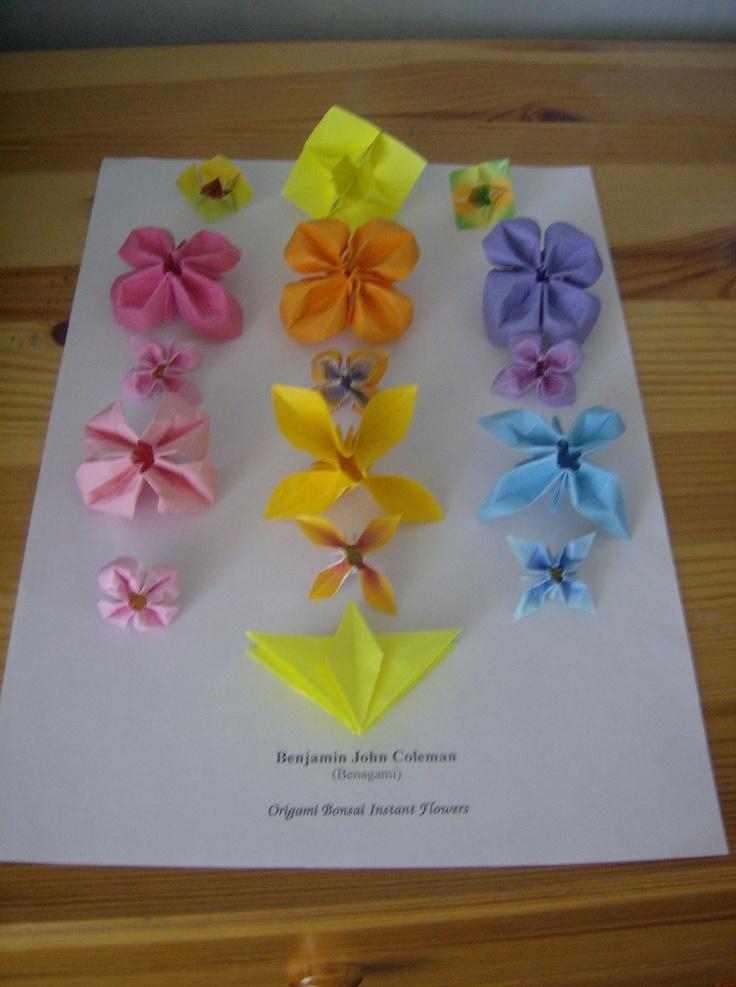 Benjamin John Coleman (Benagami)   Instant flowers variációk