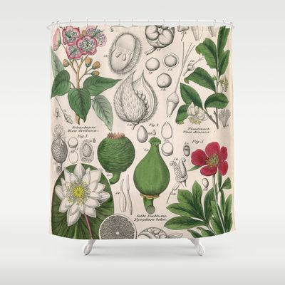 Curtains Ideas botanical shower curtain : 10+ images about Dodo Mojo Vintage Images on Shower Curtains! on ...