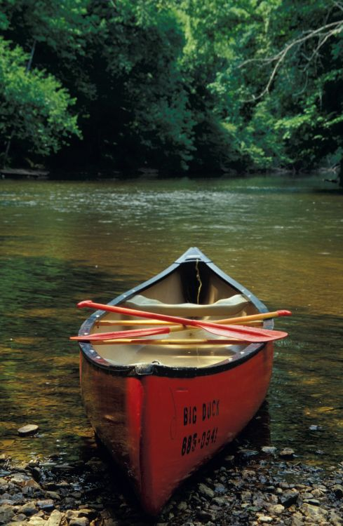 Canoeing in Shelbyville, TN. Find more fun activities here...