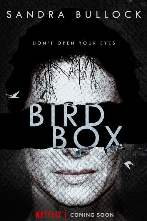 Image result for bird box movie poster