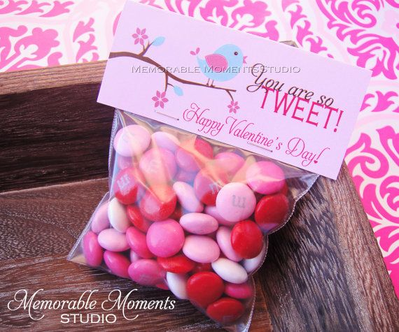 """Happy Valentine's Day!  Printable """"You are so TWEET"""" little birdie Valentine candy bag labels - by Memorable Moments Studio"""