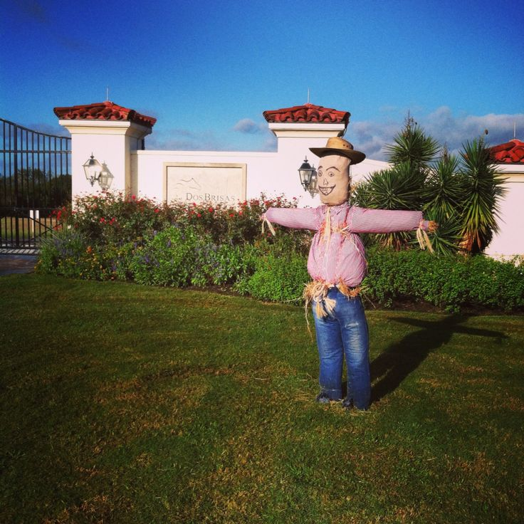 Chappell hill scarecrow festival this weekend country for Majestic homes bryan tx