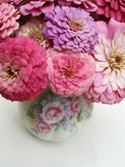 Zinnias. One of my favorite flowers.: Favorite Flowers, Pink Flowers, Zinnias Bouquets, Beautiful Flowers In Vase, Purple Flowers, Floral Bouquets, Dreams Cottages, Zinnias Gardens, Pink Peonies
