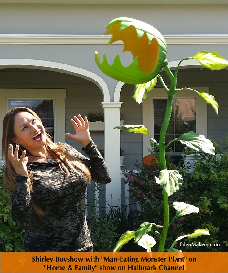 "One of the easiest Halloween crafts I've ever made has to be the ""Man Eating Monster Plant"" I presented on the Home & Family show recently. This Halloween plant craft is re..."