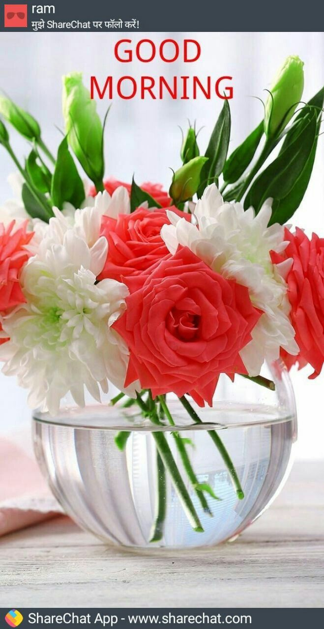 Buy Charming Attractive rose bouquet for birthday pictures trends