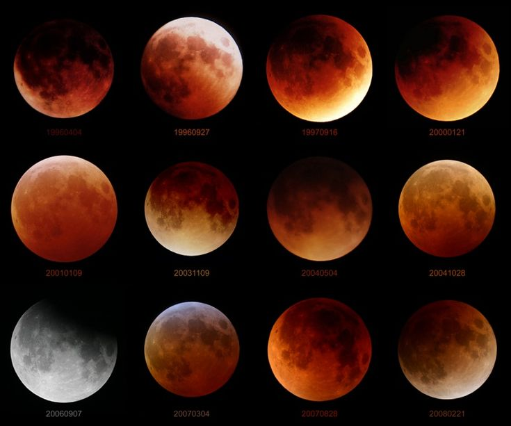 9 best moon phases eclipses images on pinterest moon phases la as the pictures are at the same scale they illustrate a noticeable variation in the apparent size of the eclipsed moon caused by the real change in sciox Image collections