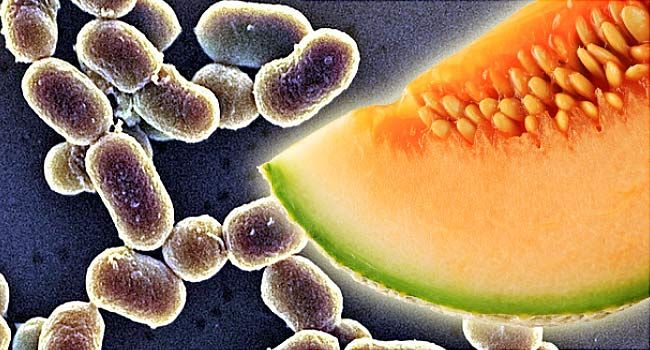how to tell if you have listeria