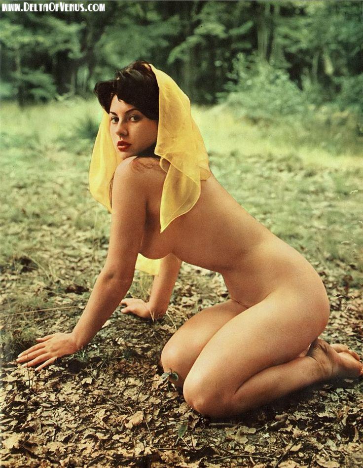 Authentic vintage porn 1950s shaved pussy voyeur fuck 8