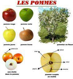 bricolage pommes - Recherche Google