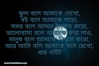 Good night image bangla