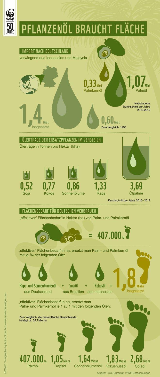 Ölerträge verschiedener Ölpflanzen (Palmöl, Kokos, Soja, Sonnenblume und Raps) und Flächenbedarf für Deutschlands Ölverbrauch © WWF