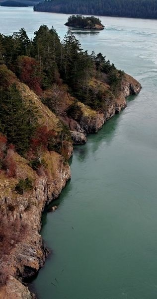 Four hikes for all seasons in Snohomish and Island counties.