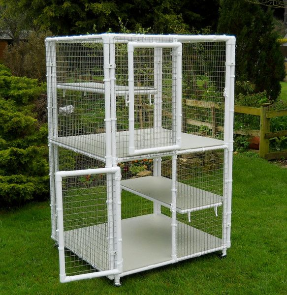 Diy outdoor cat enclosure pvc pictures to pin on pinterest for Diy cat tree pvc pipe