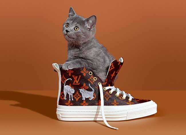 c2c711ca037a Louis Vuitton s New Catogram Collection Featuring Grace Coddington s Art.   adcampaign  louisvuitton  catogram  shoes  illustration  cat   gracecoddington ...