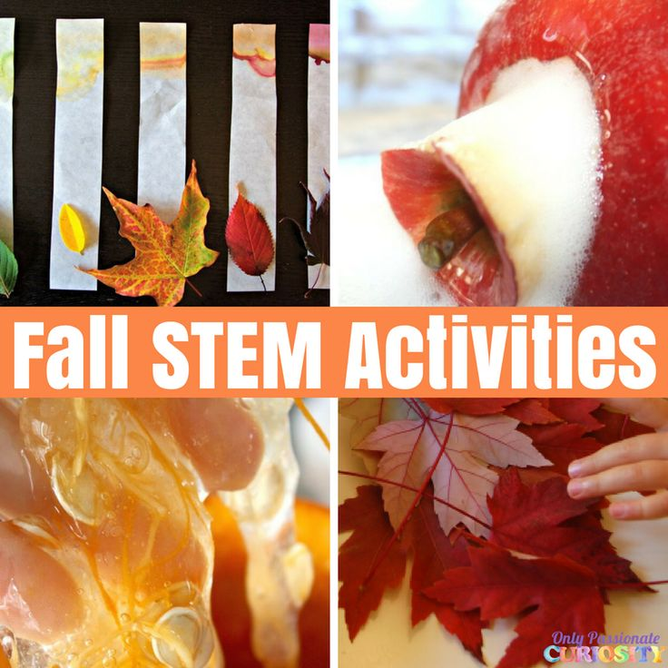 Halloween STEM Activities – Only Passionate Curiosity