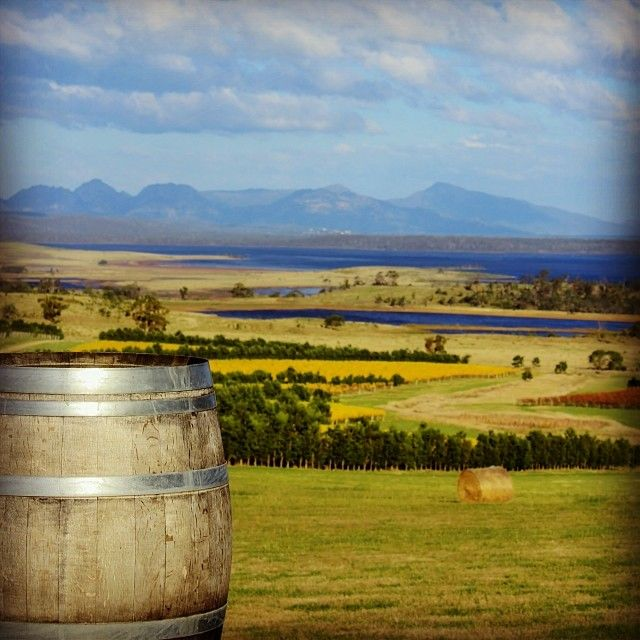 What a view from the Cellar Door at Devil's Corner Wine. Devil's Corner Cellar Door can be found in Sherbourne Road, Apslawn. #vineyards #tasmania #discovertasmania Image Credit: Sheree Armstrong