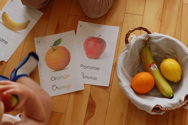 Montessori inspired fruit unit