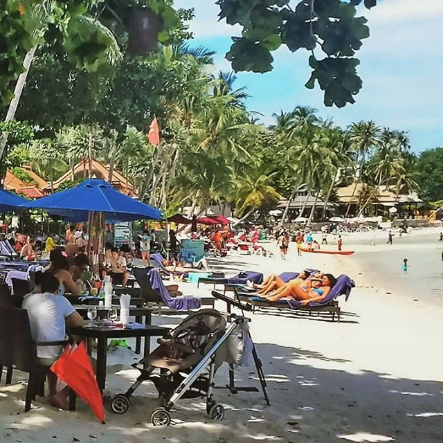 99 best chaweng beach images on pinterest koh samui in for Table 99 koh samui