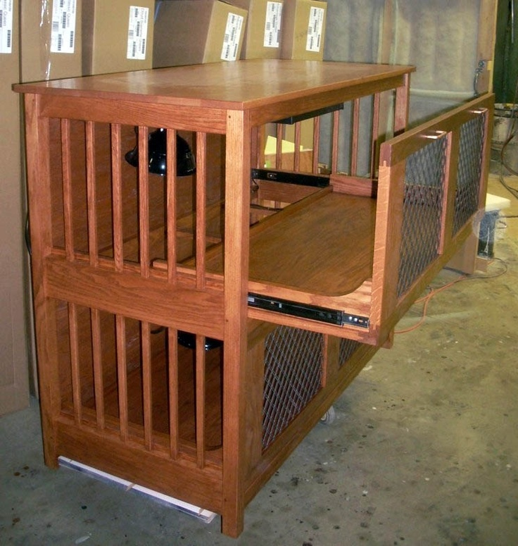 56 best images about guinea pig stuff on pinterest cavy for How to clean guinea pig cages