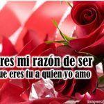 Preciosas Imágenes De Amor Con Ramos De Rosas Rojas