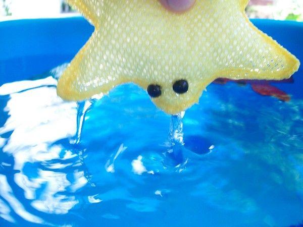 Hitode san est le nom de l'étoile de mer. Sa composition permet un entretien facile et un séchage rapide.
