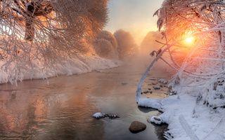 Снежное, река, рассвет, деревья