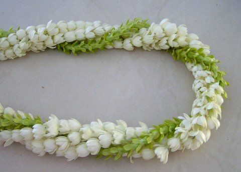 My favorite lei combo: Pikake (Jasmine) and Pakalana