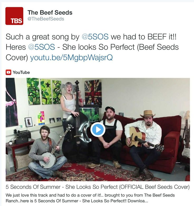 5 Seconds of Summer - She Looks So Perfect (OFFICIAL  Beef Seeds Cover)  www.thebefseeds.com #KEEPITBEEFY #bluegrass