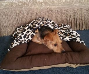 Dog Bed with Removable Blanke