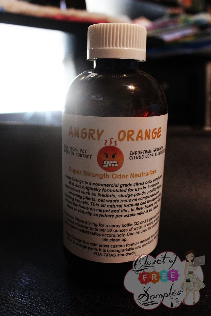 Dealing With Pet Odor: Angry Orange Pet Odor Eliminator | Get FREE Samples by Mail | Free Stuff