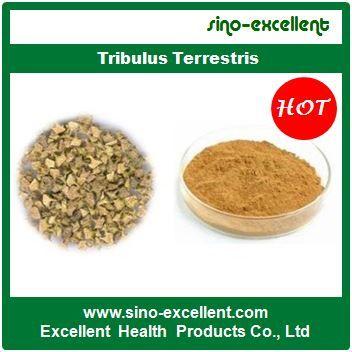 Top Grade Tribulus Terrestris - Product details of China Top Grade Tribulus Terrestris. http://www.sino-excellent.com/herbal-extract/4144413.html