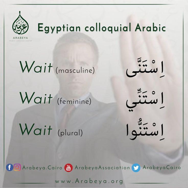 Arabeya Cairo (@arabeyacairo)   Twitter sayfasından Medya Tweetleri