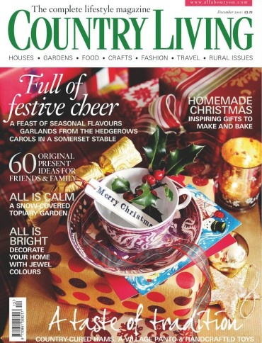 My favorite magazine to read for house decor and craft ideas!