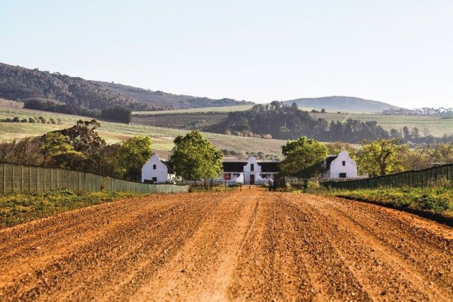 A foodie road-trip in South Africa