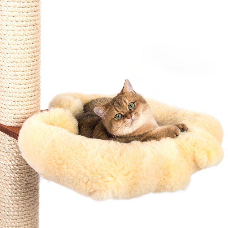 Hängematten, Liegeebenen, Katzenmulden Und Katzenhaus Aus Echtem Holz Für  Selbst Zusammengestellte Katzenkratzbäume. Planen