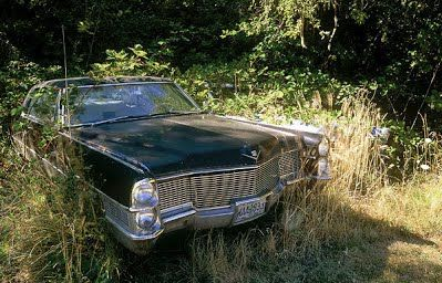 Gary Albertson, Caddys in Grasses